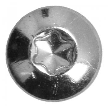 Gehäuseschraube / Ersatzschraube (T10)