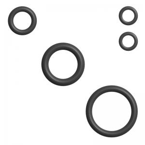 Dichtung / O-Ringe Set zu Schäumerkopf (V1) - WMF Ecco