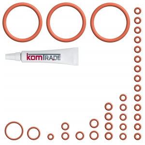 Reparatur Wartungsset (XL) - DeLonghi ECAM 28.466.MB PrimaDonna S