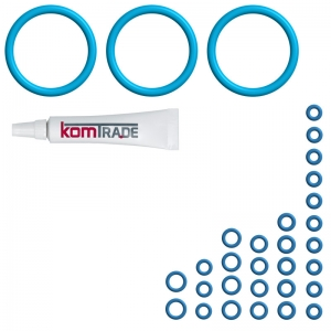 Reparatur Wartungsset PREMIUM (XL) - DeLonghi ESAM 5700.S - Perfecta